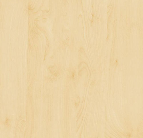 Birch wood grain
